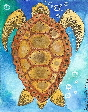 aceo turtle